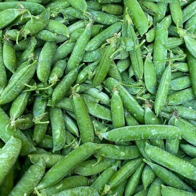 Jersey English Shelling Peas