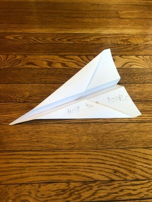 Fin's Paper Plane