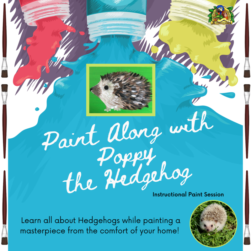 Paint Along with Poppy the Hedgehog - Friday, July 31st at 6:00 PM PST