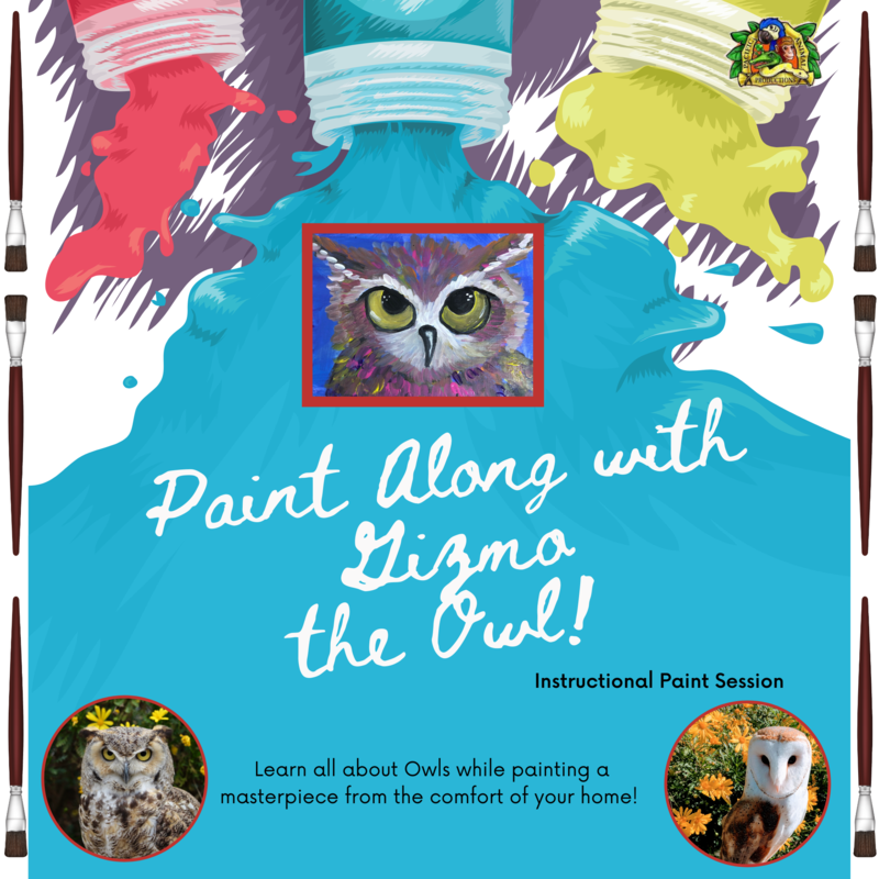 Paint Along with Gizmo the Owl - Friday, July 10th at 6:00 PM PST