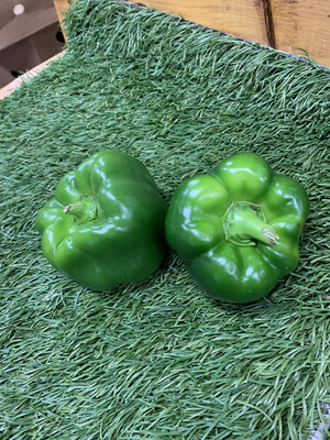 Peppers - Green, 1lb