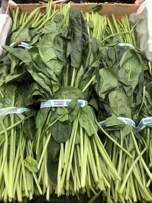 Spinach - Bunch