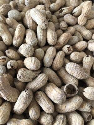 Peanuts - In Shell, 1lb