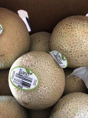 Melons - Cantaloupe, Small