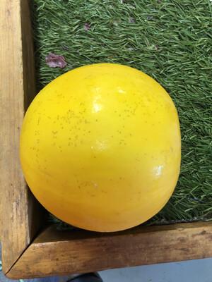 Melon - Golden Honeydew