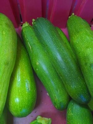 Zucchini - medium, Hlubik's