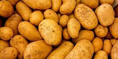 Estima Potatoes - 7.5kg