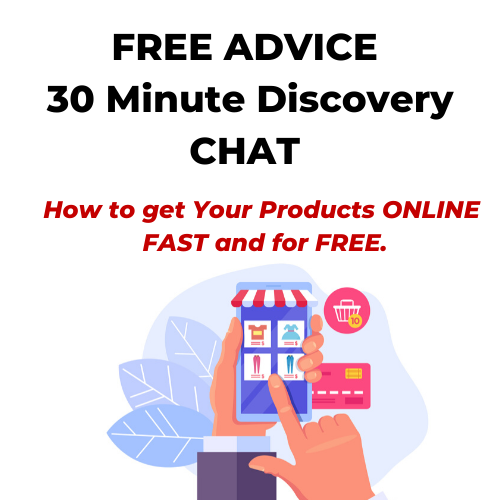 FREE ADVICE - 30 Minute Call - How to get ONLINE FAST and for FREE.