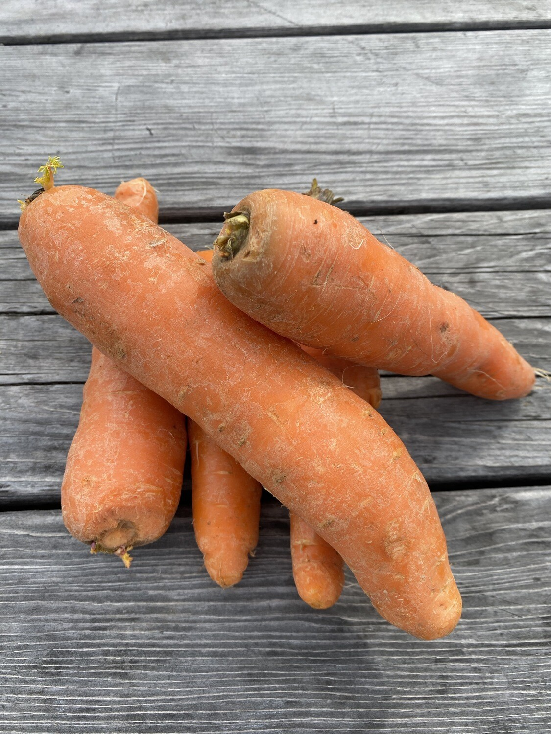 Carrots | 1lb | Tangerini's Own