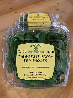 Fresh Pea Shoots | Tangerini's Own