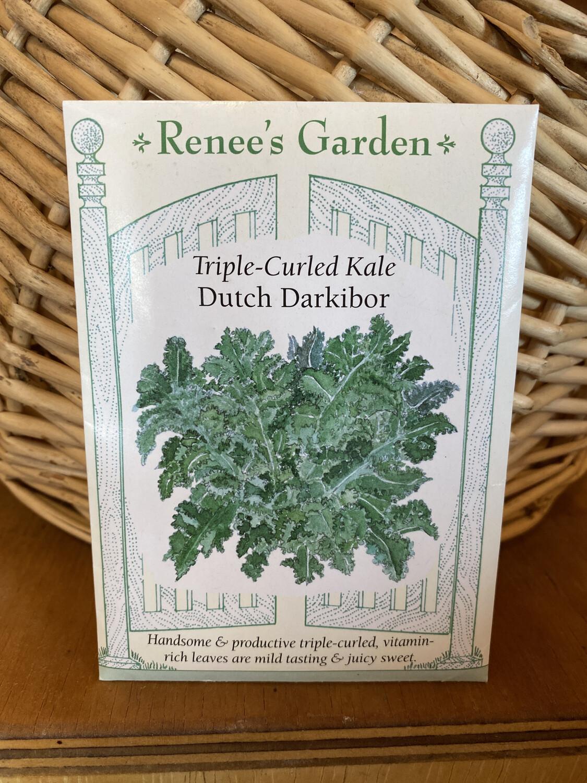 Triple Curled Kale Dutch Darkibor   Renee's Garden Seed Pack   Past Year's Seeds   Reduced Price