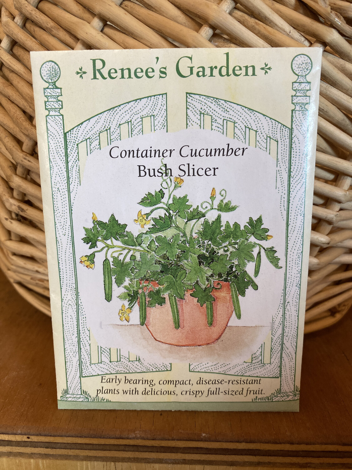 Container Cucumber Bush Slicer | Renee's Garden Seed Pack | Past Year's Seeds | Reduced Price
