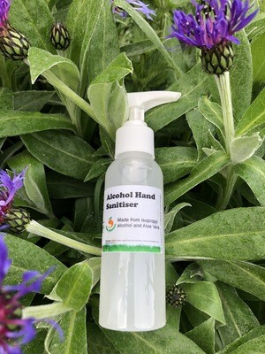 Hand Sanitiser (65%) with Aloe Vera 125ml
