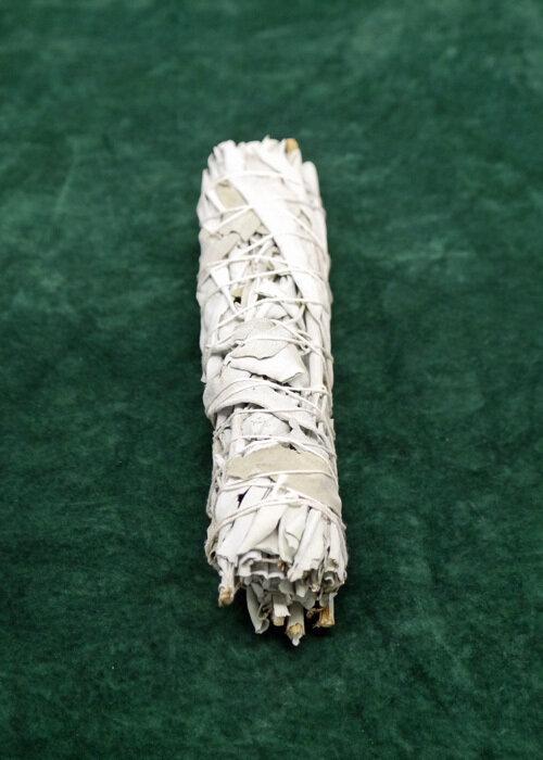 California Broadleaf White Sage Bundle - Large