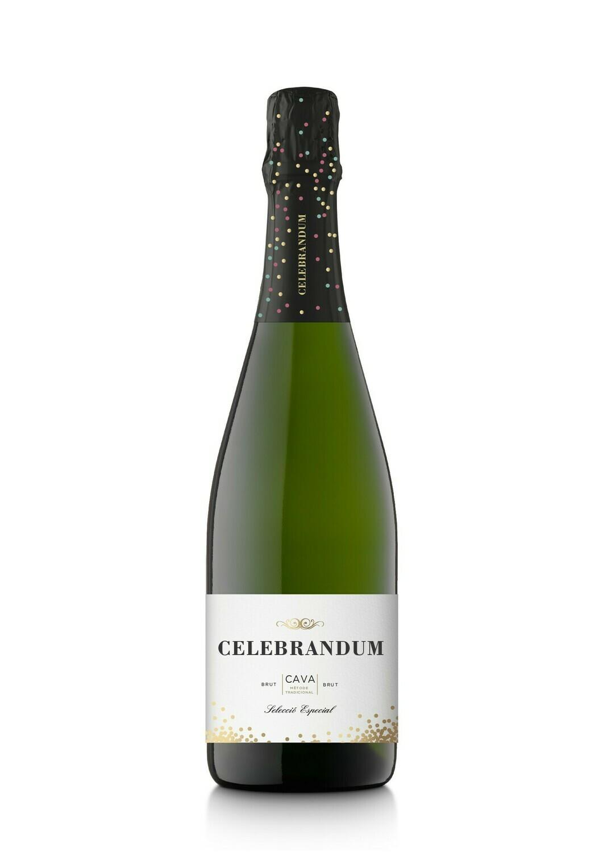 Cava Celebrandum Brut - Gekoeld