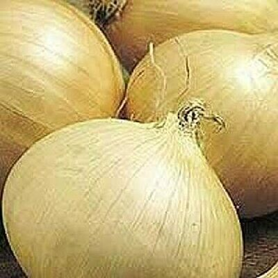 ONLINE Onions - White Sweet Onions 1.99 / lb