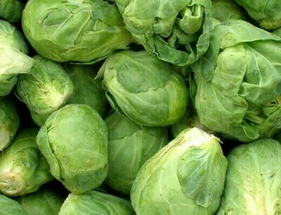 ONLINE Brussells Sprouts-$3.99Lb