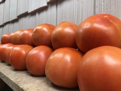 ONLINE - Tomatoes- Slicing- $2.25/lb