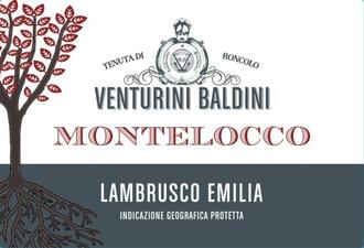 Venturini Baldini Montelocco Lambrusco NV