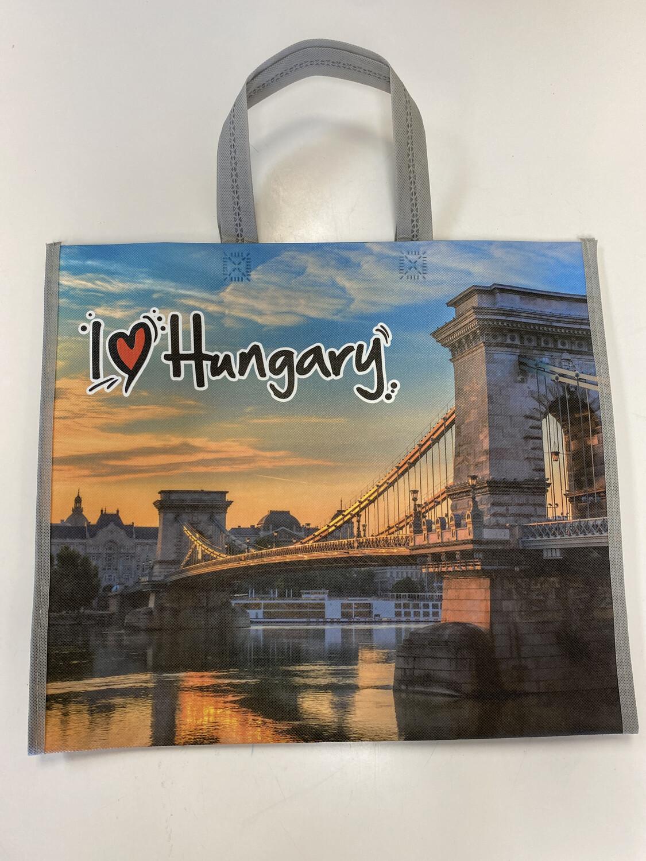 Plasa Ungaria