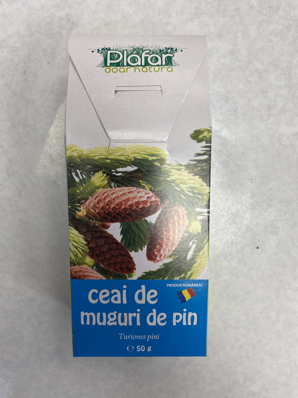 Plafar Muguri