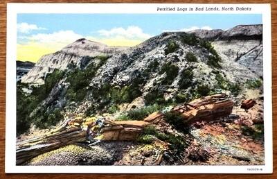 Petrified Logs in Bad Lands North Dakota Vintage Postcard
