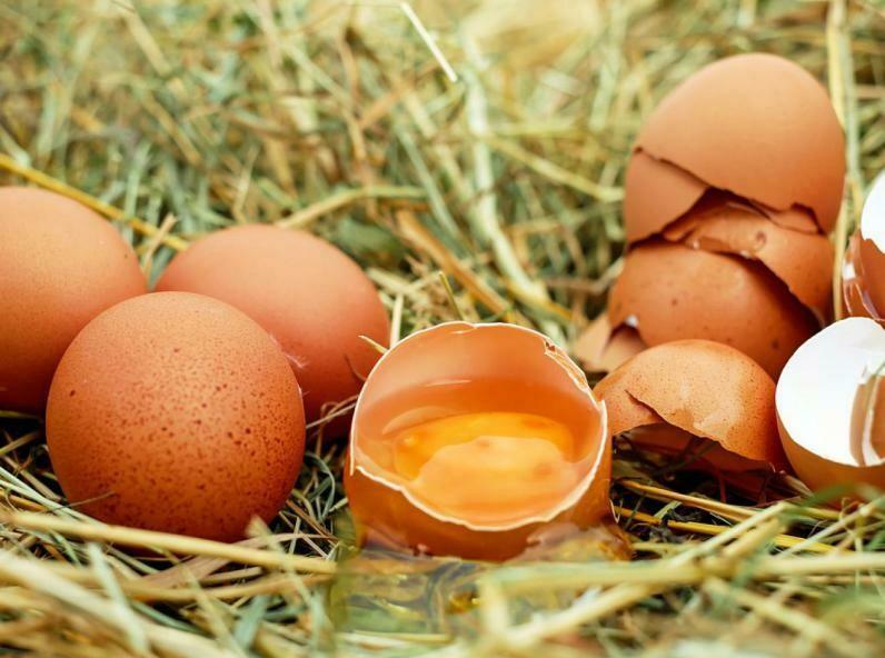 Œufs gros plein air  la boite de 6 œufs