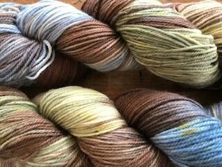 Riverstone Yarns - 80/20 Sock - Kootenay Vibe