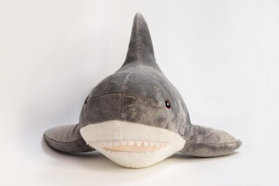 Акула (серая)
