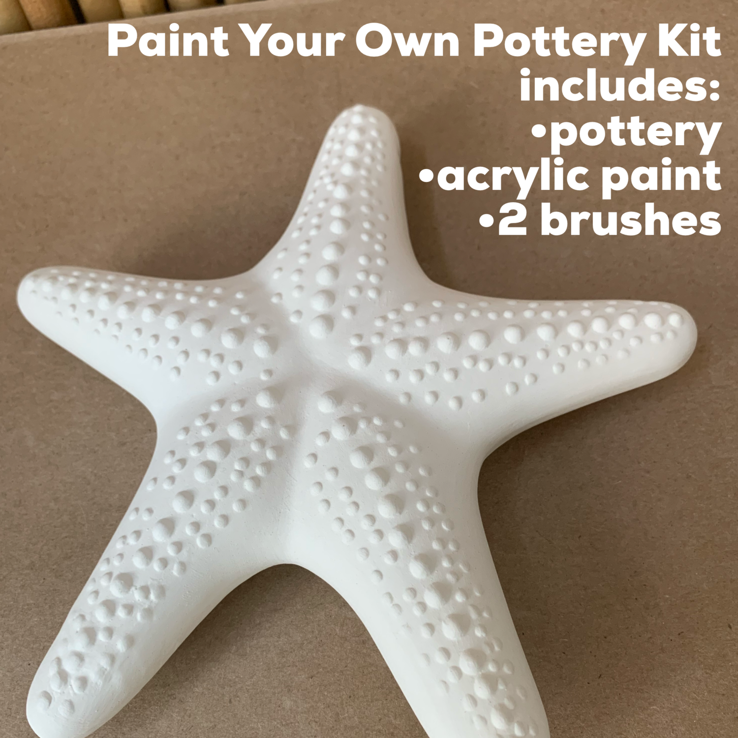 NO FIRE Paint Your Own Pottery Kit -  Ceramic Hanging Starfish Acrylic Painting Kit