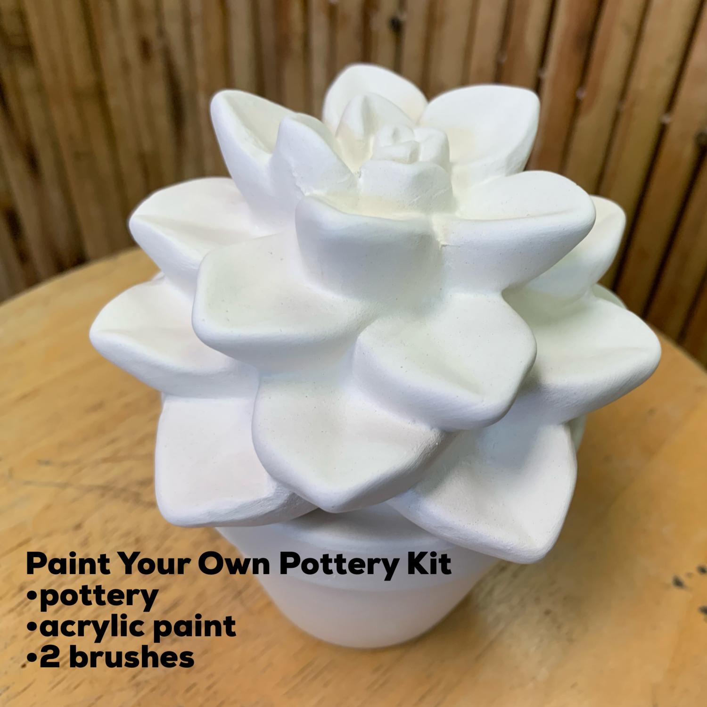 Ceramic Succulent Cactus Plant Acrylic Painting Kit