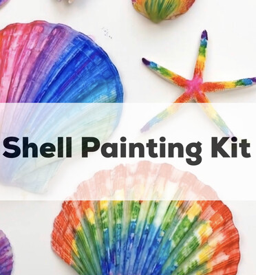 Seashell Acrylic Painting Kit - 5 Unpainted Shells