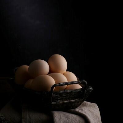 Farm Fresh Eggs - Forsythe Family Farms 2009 Inc.