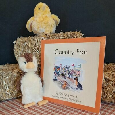 Country Fair - The Railfence Bunch Series by Carolyn j Morris