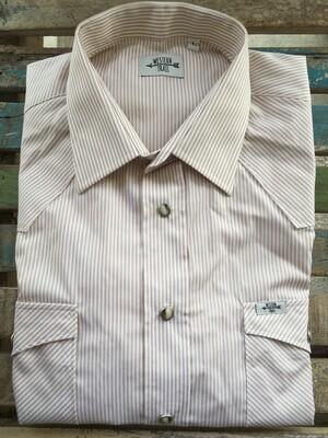 Camicia uomo-NUT STRIPES
