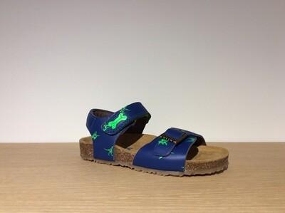 Losto bluette+verde fluo