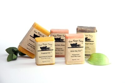 Sample Soaps: Choose 5 Half Bars (Wedding favors, Travel Soaps, Stocking Stuffers)