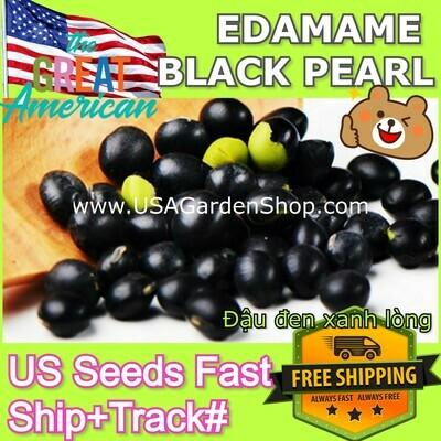 EDAMAME BLACK Đậu đen xanh lòng