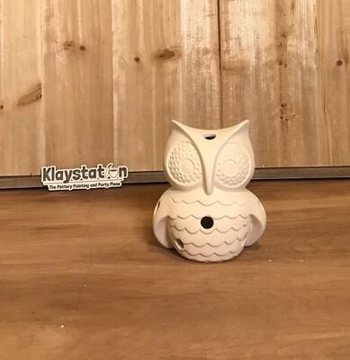 Owl Luminary W/ Light