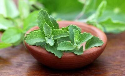 Süsskraut Stevia gemahlen