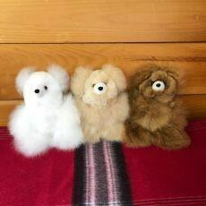 Teddy Bears 5.5