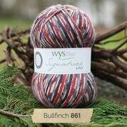 WYS 4ply - Bullfinch