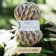WYS 4ply - Goldfinch
