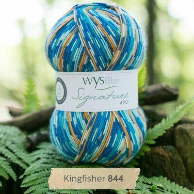 WYS 4ply - Kingfisher