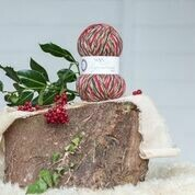 WYS 4ply - Holly Berry