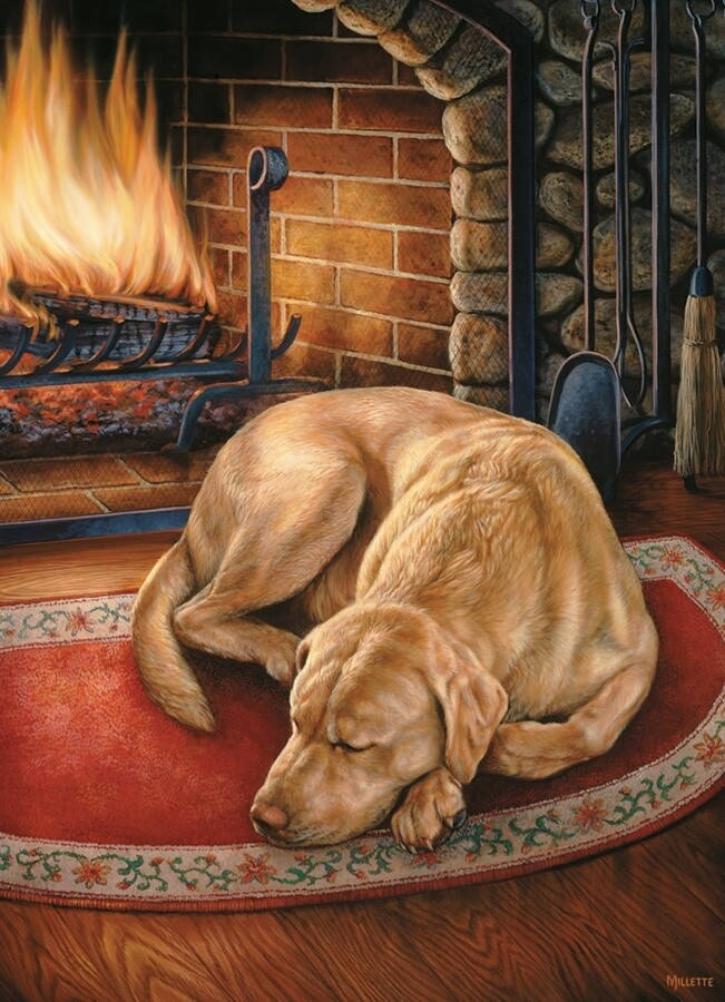 Home is Where the Dog Is - 1000 Piece Cobble Hill Puzzle
