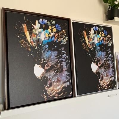 Black Cockatoo Canvas 40x50