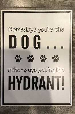 Somedays You're the Dog Sign