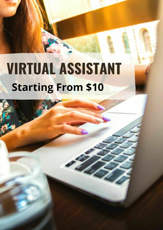 Envartis Virtual Assistant