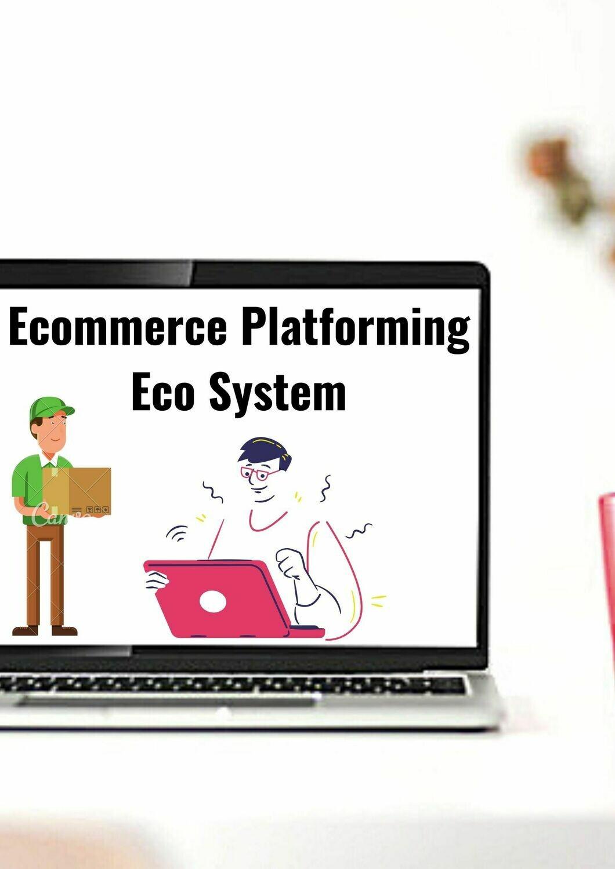 Ecommerce Platforming Eco System